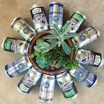 Beer cans as a flower