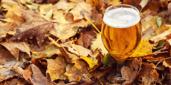 Banner image for Seasonal Beers To Try This Fall